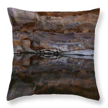 Throw Pillow featuring the photograph Gateway by Evelyn Tambour