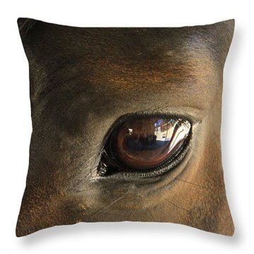 Gateway To A Horses Soul Throw Pillow