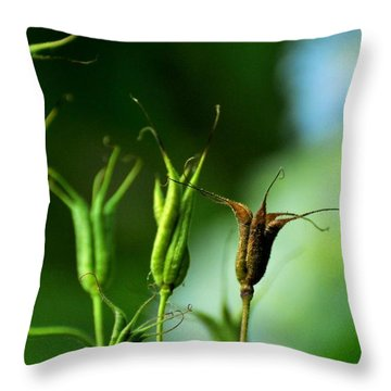 Throw Pillow featuring the photograph Gather If You Wish. Then Let Them Go. by Rebecca Sherman