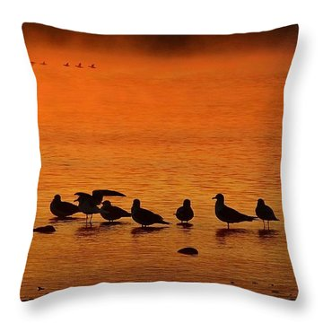 Gathering At Sunrise Throw Pillow