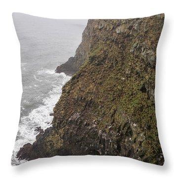 Gathering Guillemot Eggs On Cliffs Throw Pillow