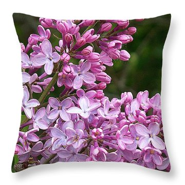 Gathering Lilacs Throw Pillow by Joy Nichols