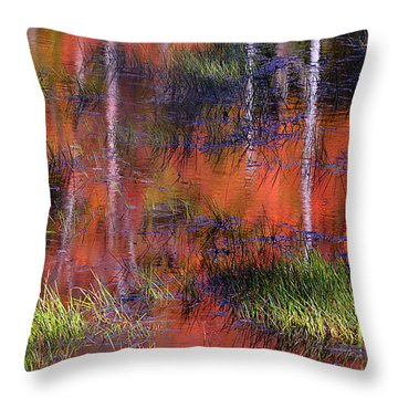 Gatineau Abstract Throw Pillow