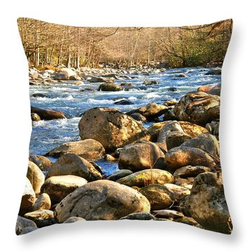 Throw Pillow featuring the photograph Gatlinberg River by Donald Williams