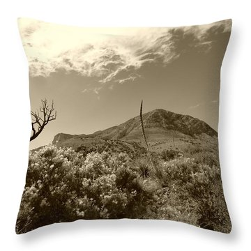 Throw Pillow featuring the photograph Gaudalupe Vignette - A Sepia   by Joel Deutsch