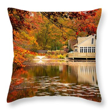 Gaze In Wonder Throw Pillow