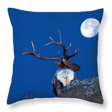 Gazing At The Moon Throw Pillow