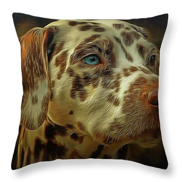 Gazing Into The Sunset Throw Pillow