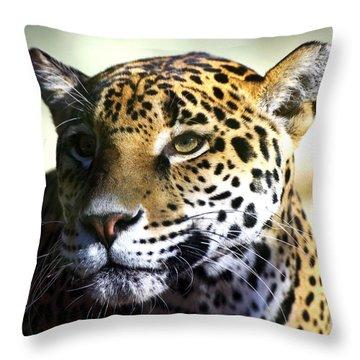Gazing Jaguar Throw Pillow