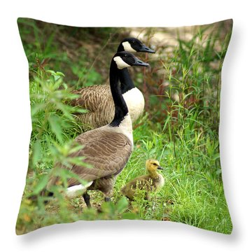 Geese And Gosling Throw Pillow by Kim Pate