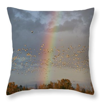 Geese And Rainbow Throw Pillow