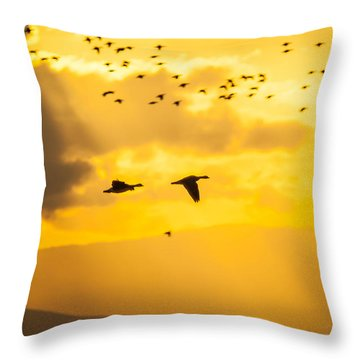 Geese At Sunset-2 Throw Pillow