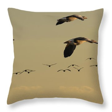 Geese Charter Throw Pillow