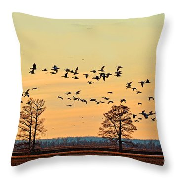 Geese In Flight I Throw Pillow by Debbie Portwood