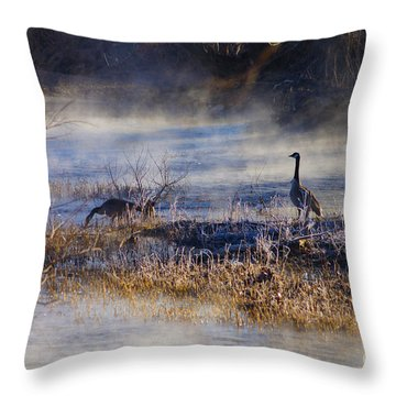 Geese Taking A Break Throw Pillow