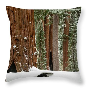 General Grant Circle In Snow  1-7932 Throw Pillow
