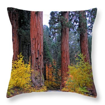 Throw Pillow featuring the photograph General's Highway by Lynn Bauer