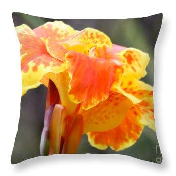 Gentle Awakening Throw Pillow by Carol Groenen