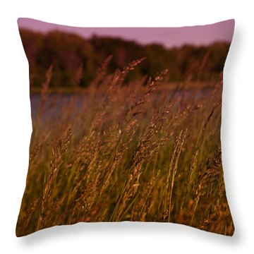 Gentle Breeze Throw Pillow by Miguel Winterpacht