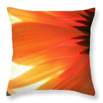 Gentle Flame Throw Pillow