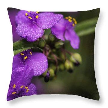 Gentle Rain Throw Pillow by Mary Lou Chmura
