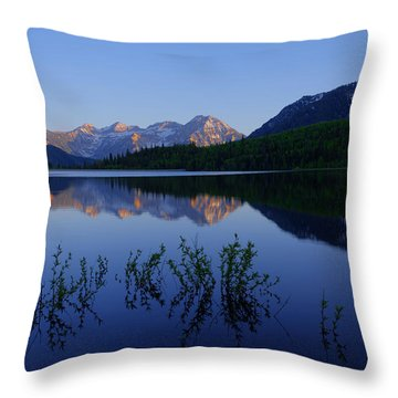 Gentle Spring Throw Pillow by Chad Dutson