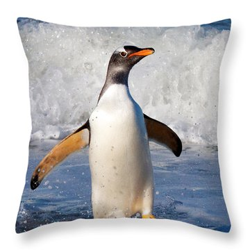 Gentoo Ashore Throw Pillow