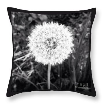 Throw Pillow featuring the photograph Geodesicate by Vanessa Palomino