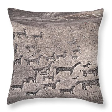 Geoglyphs At Tiliviche Chile Throw Pillow by James Brunker