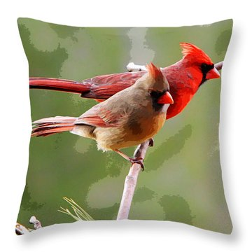 George And Gracie Throw Pillow