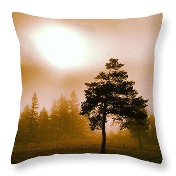 Sun Throw Pillows