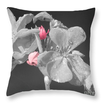 Geranium Throw Pillow by Cindy Manero