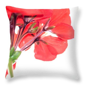 Geranium In Red Throw Pillow