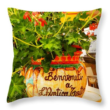 Geranium Planter Throw Pillow