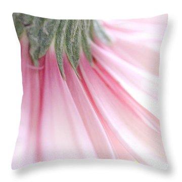 Gerbera  Throw Pillow by Andrea Kollo