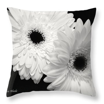 Throw Pillow featuring the photograph Gerbera Daisy Sisters by Jeannie Rhode