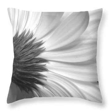 Gerbera Daisy Monochrome Throw Pillow