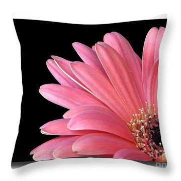 Throw Pillow featuring the photograph Gerbera Encore by Chris Anderson