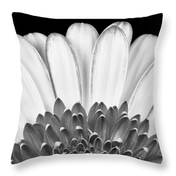 Gerbera Rising Throw Pillow by Adam Romanowicz