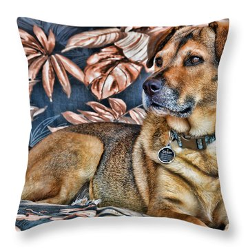 Throw Pillow featuring the photograph Gerry And The Lounge Chair by Barbara Manis
