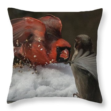 Get Off My Feeder Throw Pillow