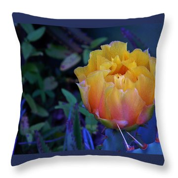 Get To The Point Throw Pillow by Warren Thompson