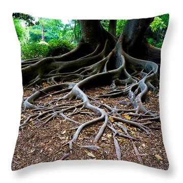 Get To The Root Of It Throw Pillow