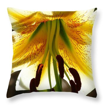 Getting Intimate Throw Pillow