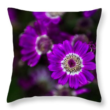 Getting Noticed Throw Pillow by Syed Aqueel