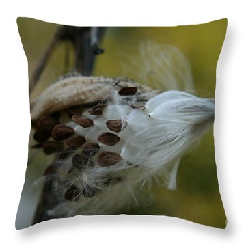 Getting Ready For Flight No.3 Throw Pillow by Neal Eslinger