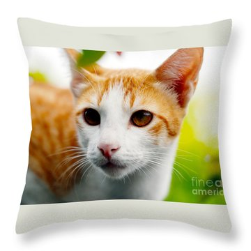 Getting Ready For The Hunt Throw Pillow by Ivy Ho
