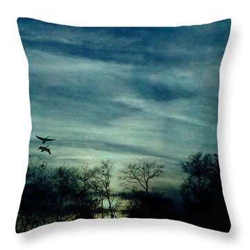 Getting Ready For The Night Throw Pillow