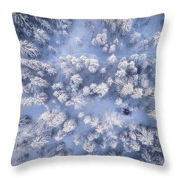Hoar Frost Throw Pillows
