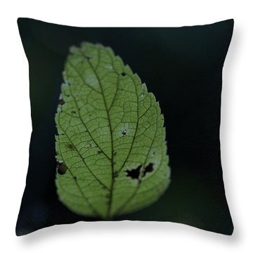 Ghost Of Summer Throw Pillow by Jane Eleanor Nicholas